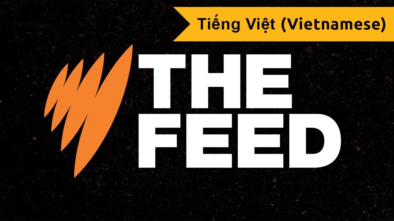 The Feed (Vietnamese)