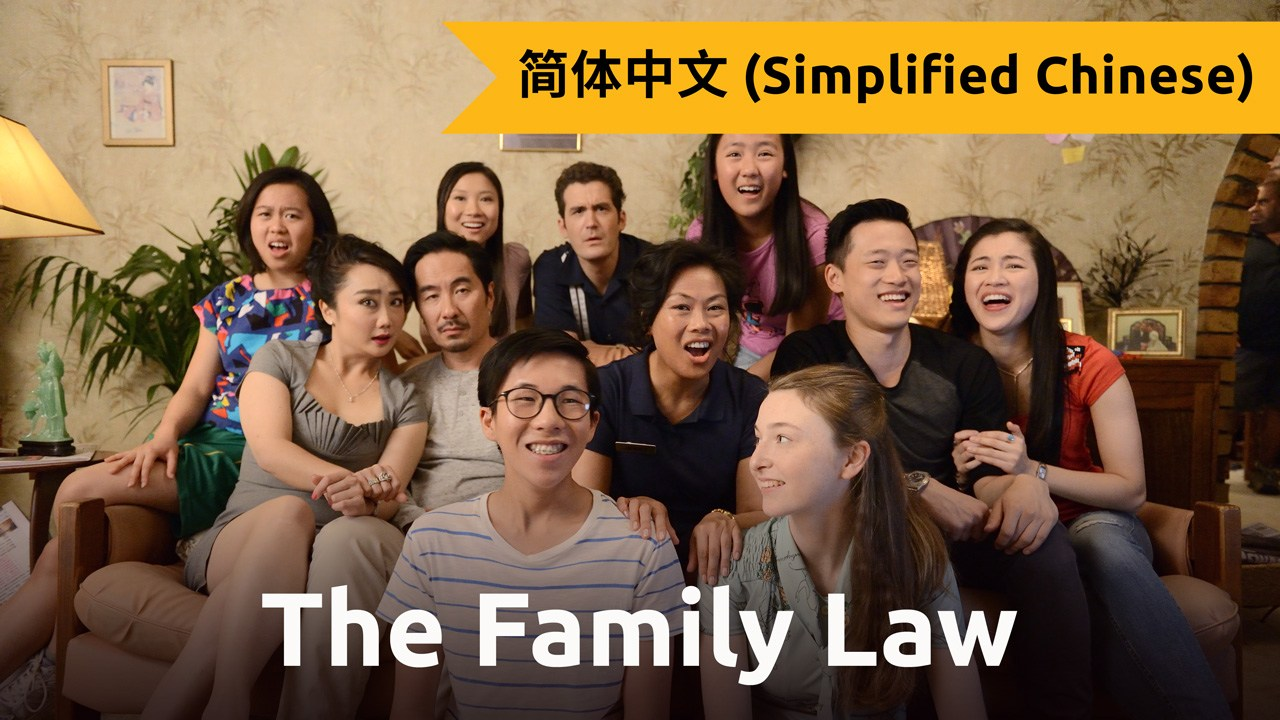 The Family Law (Simplified Chinese)