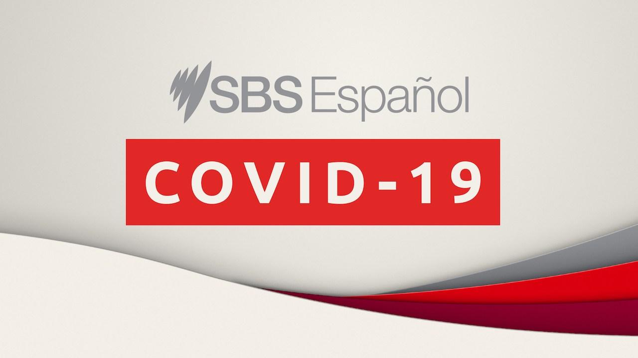 COVID-19 Daily Update (Spanish)