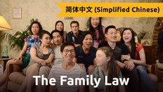 The Family Law (Chinese)
