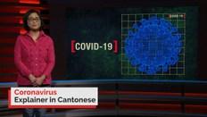 Coronavirus explained in Cantonese
