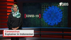 Coronavirus explained in Indonesian