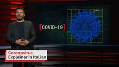 Coronavirus explained in Italian