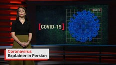 Coronavirus explained in Persian